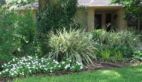 Dwarf Grasses Landscaping Build a garden ideas for landscaping with ornamental grasses dwarf ornamental grasses landscaping workwithnaturefo