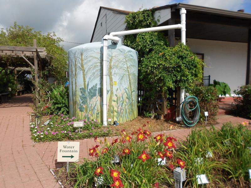 Learn About Rainwater Harvesting