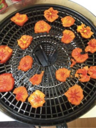 Dehydrated persimmon slices